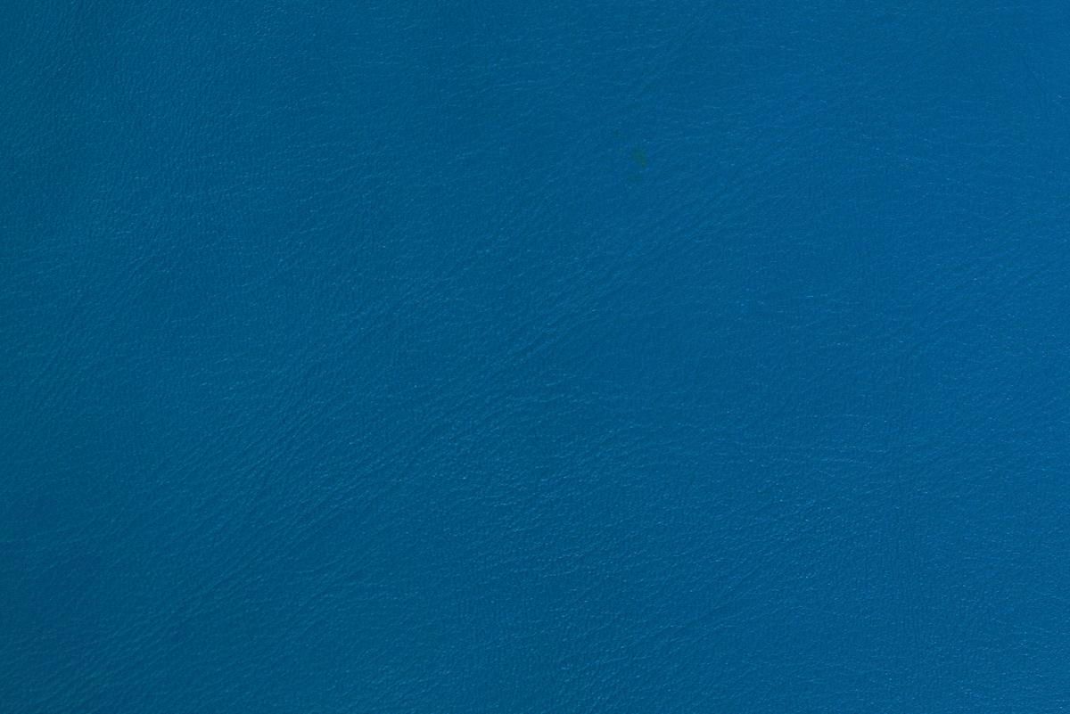 dutch-blue