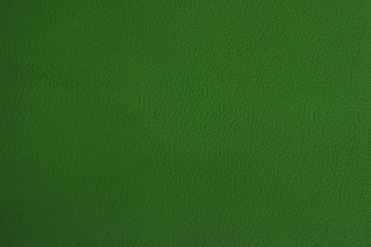 kawasaki-green